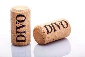 DIVO_hi